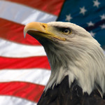 american marketing solutions